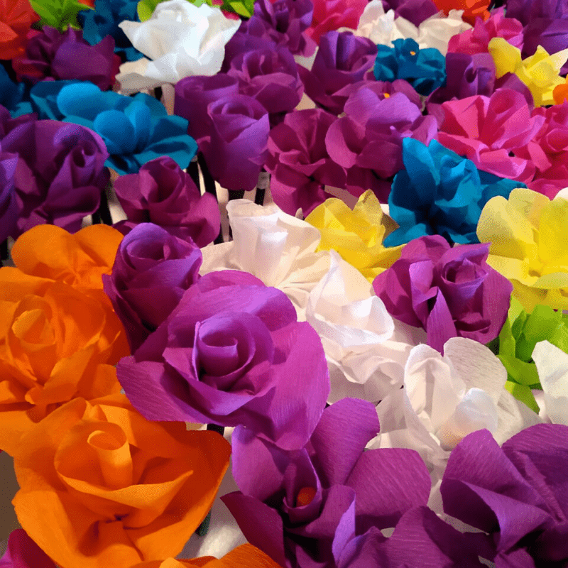 flores parkinson villarrobledo